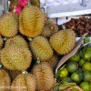Daily Photo: Durian