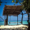 Daily Photo: Swing to Paradise